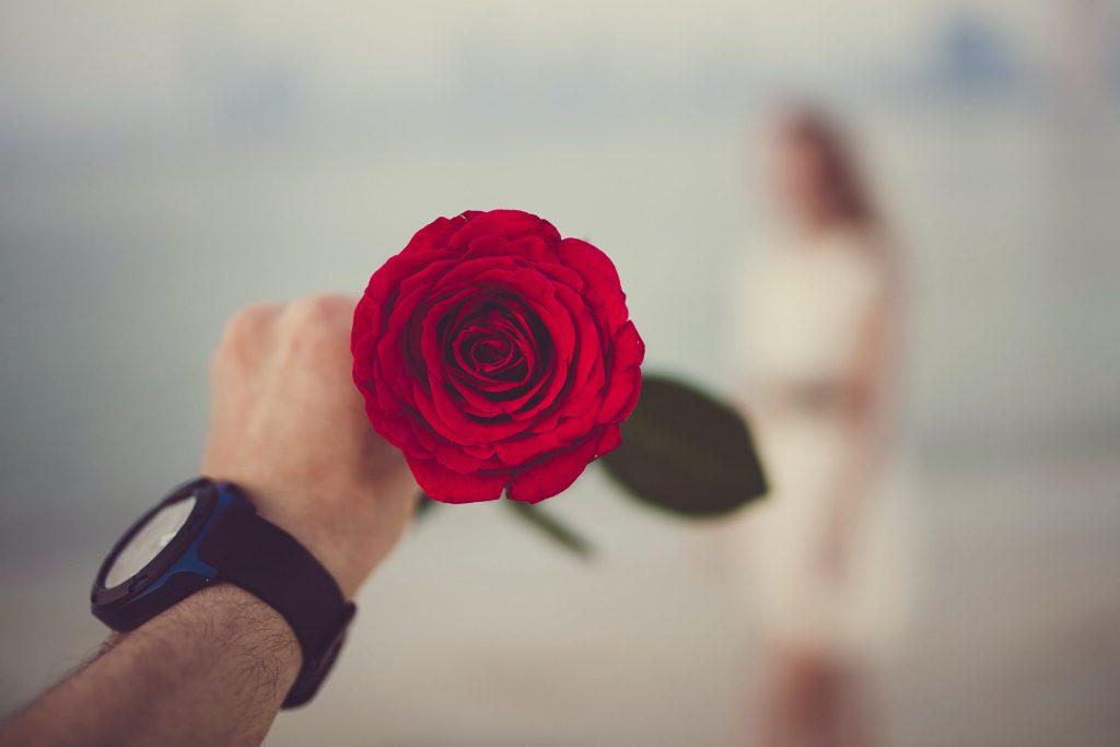 Livraison de rose rouges